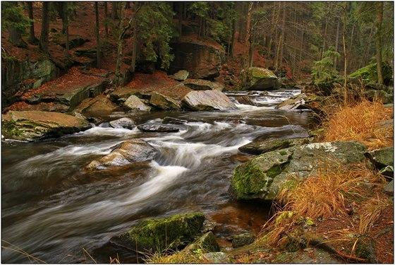 Nejdivočejší a nejrychlejší část toku Divoké Orlice je hned za kamenným mostem