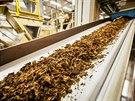 Listy tabáku se smísí s dalšími složkami, kam patří řapíky a tabákový prach, a