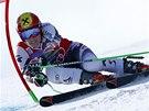 Marcel Hirscher v obřím slalomu v Adelbodenu