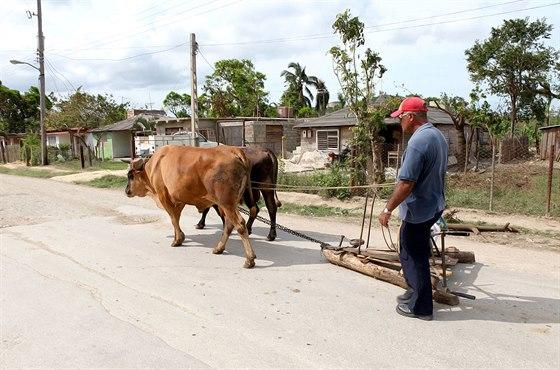 """""""Historická"""" doprava na Kubě. Bez koní a krav se tu stále neobejdou."""