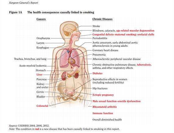 Přehled zdravotních problémů, které jsou v současnosti jasně spojeny s...