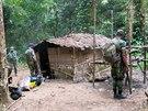 Štědrý den ráno. Třicet kilometrů hluboko v pralese nalezli strážci biosférické...