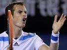 NAZLOBEN�. Andy Murray ve �tvrtfin�le Australian Open.