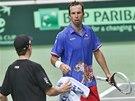 RUČNÍK, PROSÍM. Radek Štěpánek v utkání Davis Cupu proti Nizozemsku.