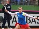 BOJ. �esk� tenistka Barbora Z�hlavov�-Str�cov� hraje ve Fed Cupu proti �pan�lce