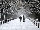 Sníh zasypal rozsáhlé oblasti na východě Japonska (Jokohama, 8. února 2014)