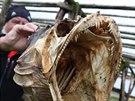 Ryby ve všech podobách patří k základům zdejší stravy – některé se suší na