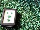 V krabi�ce jsou leskl� smaragdy v hodnot� zhruba 100 tis�c K�. Le�� na...