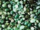 Smaragdy jsou nekvalitn�. Chyb� jim lesk, barva a �irost.