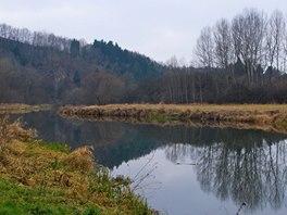 Před Ledčí nad Sázavou se tok řeky opět uklidňuje.