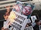 Protesty proti severokorejsk�mu re�imu v Ji�n� Koreji (16. �nora 2014)