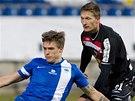Libereckého Jevhena Budnika (vlevo) se snaží ubránit slávista Milan Škoda.