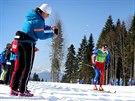 B�ec na ly��ch Luk� Bauer ve �tafetov�m z�vodu na 4x10 kilometr�. (16. �nora...