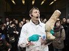 Na porážku žirafy pozvali představitelé kodaňské zoo děti. Dostalo se jim...