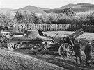 Nástup jednotky wehrmachtu na odstoupeném území v okolí Novohradských hor. Dobře patrné jsou lehké tanky typu PzKpfW I patřící zřejmě I. oddílu tankového pluku 25 a dělostřelecká výzbroj.