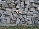 První ze dvou lebek nalezených na Přerovsku ležela na památníku připomínajícím...