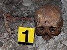 Druhá ze dvou lebek nalezených na Přerovsku ležela za dveřmi věžičky hrádku...
