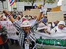 Thajští farmáři protestují proti vládě Jinglak Šinavatrové (Bangkok, 17. února...