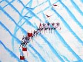 Český lyžař Ondřej Bank se řítí z kopce při olympijském závodu v supeobřím...