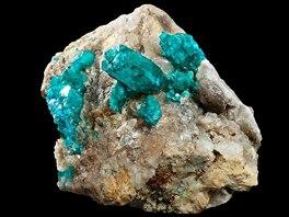 výstava Mineralia
