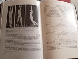 Ukázka z knihy Nekton