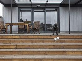 Pes Babu dal jménu i domu. Zastřešenou terasu má rád stejně jako majitelé.