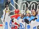 Hokejisté Plzně se radují z gólu v extraligovém utkání proti Slavii.