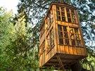Hotel TreeHouse Point v městě Issaquah ve státě Washington postavil nadšenec...