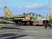 Manévry ukrajinského letectva v Nikolajevské oblasti 21. února 2014, na snímku...