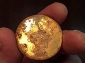 Jedna ze zlat�ch minc�, kter� man�elsk� p�r v Kalifornii na�el p�i ven�en� psa.