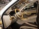 Mercedes Carlsson  CS50 Versailles