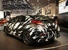 Maskovaný prototyp Hondy Civic Type-R na autosalonu v Ženevě