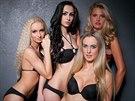 I tyhle dívky se chtějí stát Miss Motocykl 2014.