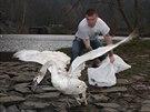 Po uzdravení a nabytí kondice se řada zvířat může ze záchranné stanice vrátit...