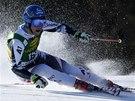 Benjamin Reich v obřím slalomu v Kranjské Goře.