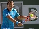 Luk� Rosol na turnaji v Indian Wells