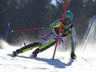 Felix Neureuther na trati slalomu v Kranjske Goře.