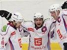 Třebíčtí hokejisté se radují z gólu.