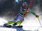 Fritz Dopfer na trati slalomu v Kranjske Goře.