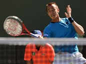 Luká� Rosol na turnaji v Indian Wells
