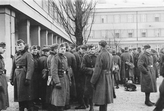 """Největší obavy měli Němci ze střetu s čs. armádou, jejíž bojovou hodnotu nijak nepodceňovali. Kromě boje o kasárna ve Frýdku-Místku se ale zabírání vojenských posádek obešlo bez výraznějších incidentů. Podle vzpomínek německých vojáků příslušníci čs. armády s Němci 15. 3. 1939 příliš nekomunikovali a na jejich dotazy a rozkazy odpovídali neustále """"Nerozumím""""."""