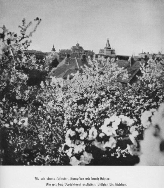 """Překlad popisku fotky z knihy Marschbefehl: Mähren.  """"Když jsme přijeli, sněžilo. Když jsme opouštěli Protektorát, kvetly třešně"""". Němci však definitivně z ČSR odejdou až o dlouhých šest let později, až pokvetou šeříky..."""