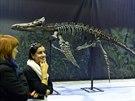 Tahle kostra byla p�ed 160 miliony lety obrovsk�m maso�av�m plazem, jemu�...