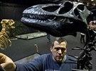 Men�� expon�ty dok�� zku�en� ruce paleontolog� seskl�dat do vitr�ny za n�kolik...
