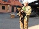 Petr Orel a poraněná orlice Tonička po zákroku veterináře na dvoře záchranné...