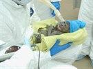 Mládě gorily narozené v zoo v San Diegu císařským řezem