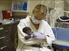 Gorilí mládě narozené v Safari parku v San Diegu má zápal plic.