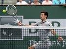 Novak Djokovi� na turnaji v Indian Wells