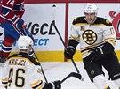 David Krejčí a Milan Lucic slaví gól Bostonu proti Montrealu.