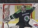 Roman Will v brance hokejové Mladé Boleslavi
